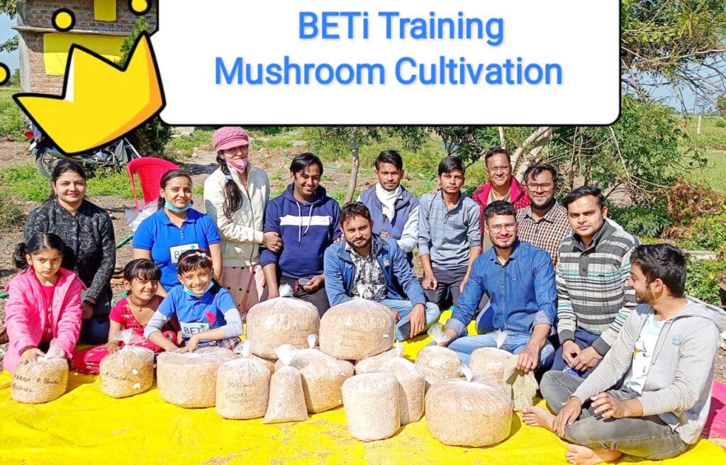 Mushroom Training Oyster and Milky